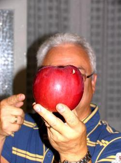 Very large red apple